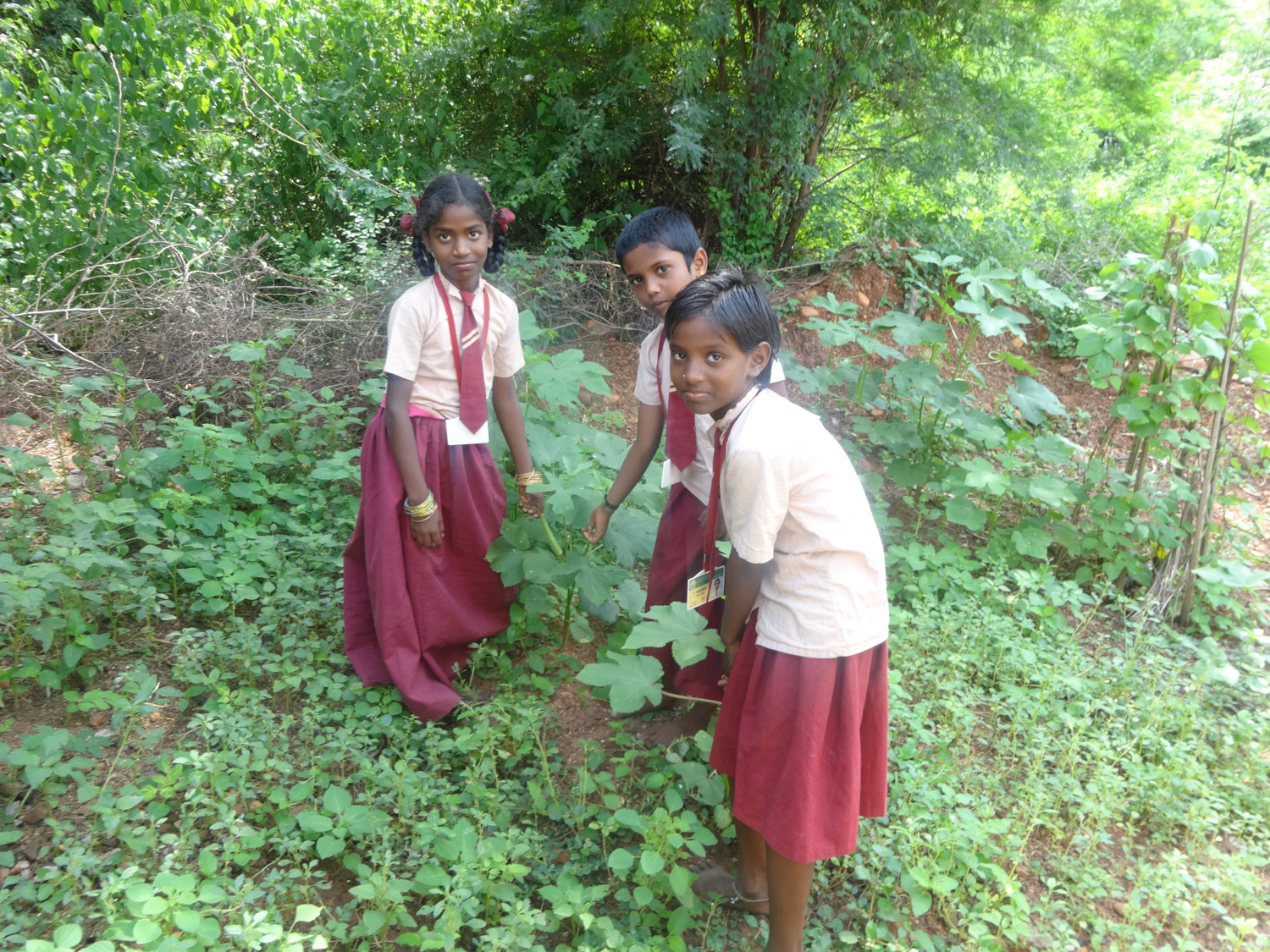 Value ased Agriculture training among children (2)