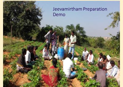 Sustainable Agriculture (21)
