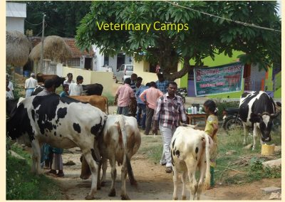 Sustainable Agriculture (29)