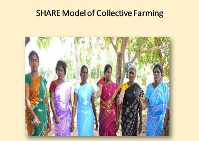 Sustainable Agriculture (34)