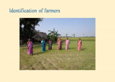 Sustainable Agriculture (39)